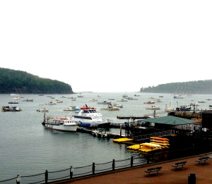 Although it was foggy it was still gorgeous, this was the harbor which we were able to enjoy from our room.