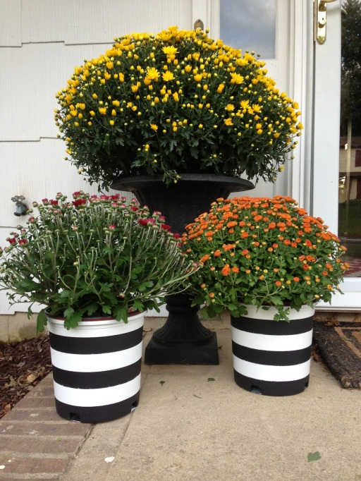 DIY Black and White striped planters on surroundedbypretty.com