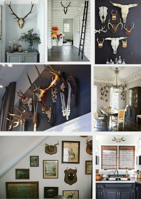Antlers used in home decor is so fetch, surroundedbypretty.com talks all about it.